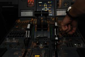 viennaflight - origiinal airbus a320 - gro1 (1)